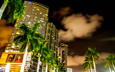 Graceful row (Elespics) Tags: city architecture night buildings miami palmtrees
