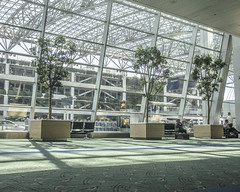 PDX Trees (Willamette Valley Photography) Tags: trees windows tree window glass oregon portland airport shadows olympus terminal indoors pacificnorthwest pdx inside airports arrivals