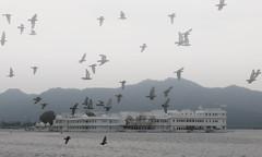 Lake Pichola - Udaipur (jeglikerikkefisk) Tags: cloud india lake cloudy indien rajasthan udaipur dunst wolkig pichola lakepichola