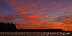 Painted Clouds (T i s d a l e) Tags: winter field sunrise dawn farm coldfront february paintedsky easternnc tisdale 2016