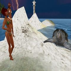 Family Portrait With Sea Turtle at Surfers of Shora (ffugue1) Tags: sea beach turtle mimi bikini fonda fugue