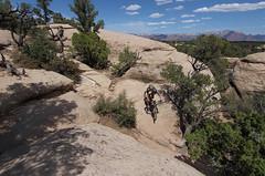 Mesa Miles (csnyder103) Tags: woman girl rock utah zion mountainbiking gooseberry gooseberrymesa droppingin southrimtrail canonefs1022 canoneossl1