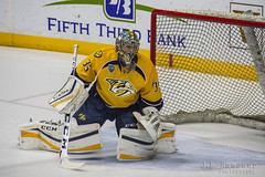 Protecting the Net - Nashville Predators Pekka Rinne (J.L. Ramsaur Photography) Tags: ice sports hockey finland photography nhl photo goalie nikon nashville tennessee sportsillustrated pic photograph thesouth 35 pekka predators goalkeeper sportsphotography nashvilletn nashvillepredators smashville musiccity rinne bluegold downtownnashville preds middletennessee nationalhockeyleague flickrsports davidsoncounty pekkarinne ibeauty predatorshockey tennesseephotographer southernphotography screamofthephotographer countrymusiccapital nashvillepredatorshockey jlrphotography photographyforgod capitaloftennessee bridgestonearena d7200 predshockey engineerswithcameras jlramsaurphotography nikond7200 protectingthenet
