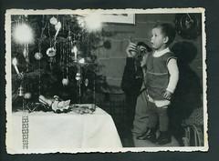 Archiv EE223 Weihnachtsbaum mit Wunderkerzen, 1950er (Hans-Michael Tappen) Tags: christmas xmas weihnachten child christmastree kind 1950s tinsel nol weihnachtsbaum mutter tannenbaum gongs christbaum lametta arbredenol 1950er christmastreedecorations wunderkerzen christbaumschmuck sternspritzer archivhansmichaeltappen lamelledor