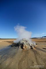 shs_n8_024051 (Stefnisson) Tags: iceland steam geothermal myvatn sland gufa hver nmaskar mvatn fumaroles hverir hverasvi jarhiti stefnisson