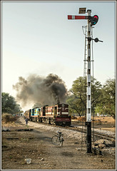 Let's get the show on the road.... (david.hayes77) Tags: india smoke signal exhaust rajasthan semaphore nwr alco indianrailways chomu 2016 ner metregauge ydm4 52081 chomunsamod train52081