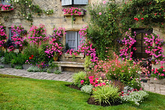 Blaye (Aquitaine, France) (clodio61) Tags: old city flowers urban house plant france color building architecture garden french photography ancient europe day cityscape exterior outdoor medieval historic citadelle aquitaine gironde blaye
