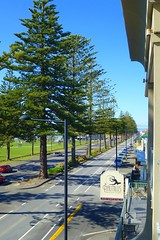 The View Down Marine Parade (gec21) Tags: newzealand panasonic nz napier hawkesbay 2015 dmctz20