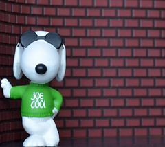 He's Cool.  Joe Cool. (linda_lou2) Tags: toy cool peanuts snoopy figure joecool odc schleich 11366 day12366 366the2016edition 3662016 12jan16
