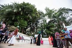 5D8_7244 (bandashing) Tags: england people tree manchester sharif women shrine muslim islam headscarf hijab palm niqab sylhet bangladesh socialdocumentary burkah dargah aoa shahjalal bandashing akhtarowaisahmed