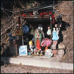 Roadside shrine (ADMurr) Tags: lake 6x6 film rollei silver la fuji princess slide disney virgin chrome manger mf confusing planar