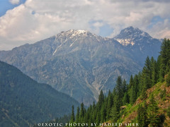 Utror Valley !! (C@MARADERIE) Tags: mountain color nature horizontal landscape colorful outdoor hill nopeople ridge mountainside hillside swat mountainridge colorimage mountainpeak swatvalley kpk naturismphotography