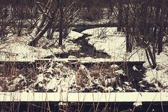XE23 - Husie Mosse waterfall WEB (manuel ek) Tags: winter lens prime skne sweden january manuel sverige malm fujinon 2016 23mm fujiflm husie xe2 fujilove manuelek manuelekphoto husiemosse fujisweden