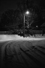 Jonas (Michael Kline) Tags: snow virginia january roanoke 2016