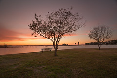 Sundown (Amitabhs Photography) Tags: park sunset lake tree art water colors clouds bench landscape living nikon colorful long exposure texas outdoor room horizon fineart wide scenic enjoy frame sit d750 waterscape conroe sunsetwx