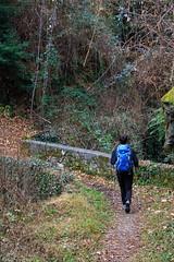 Di Nuovo Qui (Roveclimb) Tags: bridge mountain hiking ponte montagna brucke escursionismo triangololariano lezzeno picet madonnadeiceppi valledivilla cendraro