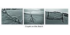 """Life's a beach"" (Livesurfcams) Tags: beach sand dunes driftwood devon croyde"