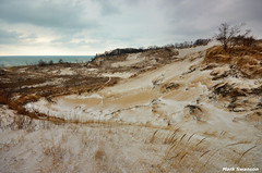 Windswept Dunes (mswan777) Tags: park winter sky lake snow cold nature grass clouds landscape sand nikon wind outdoor hiking michigan dunes scenic trails sigma hills warren tall 1020mm expanse d5100