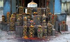 Holy Snakes (Shrimaitreya) Tags: temple shrine cobra hindu hinduism snakes tamilnadu southindia naga kundalini nagaraj