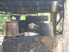 IMG_7945 (alexandre.vingtier) Tags: haiti cap rum nord rhum haitien clairin