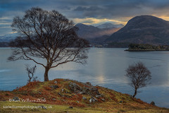 Shieldaig Blues (Shuggie!!) Tags: trees houses sea mountains clouds sunrise landscape dawn islands scotland highlands williams karl grasses bracken birch bluehour hdr westerross zenfolio lochshieldaig karlwilliams