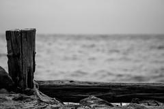 France (Jrmy Deberdt) Tags: sea france wind sony rainy a58
