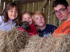 The young farmers