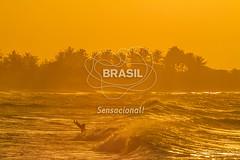 NE_DeltaParnaiba0427 (Visit Brasil) Tags: pordosol praia horizontal brasil natureza céu árvore lazer nordeste ecoturismo vegetação piauí externa silhuetas luiscorrea comgente diurna praiadoscoqueiros brasil|nordeste brasil|nordeste|piauí|luiscorrea brasil|nordeste|piauí|luiscorrea|praiadoscoqueiros brasil|nordeste|piauí