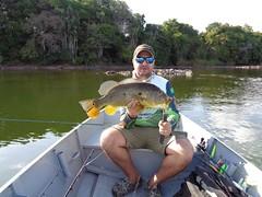 12615438_933501390072879_5932472906235332103_o (Nelson Lage - pescamazon.com.br) Tags: trip travel fish river fishing amazon bass peixe catfish xingu flyfishing casting tucunare pescaria amazonia peacockbass trombetas payara