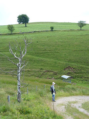 P1020087 (Marc Lamberg) Tags: de marc todtnauberg rgion halde lamberg muggenbrunn gieshbel stohren trubelsmattkopf