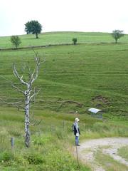 P1020087 (Marc Lamberg) Tags: de marc todtnauberg région halde lamberg muggenbrunn gieshübel stohren trubelsmattkopf