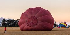 Slug-a-bed (A Different Perspective) Tags: newzealand wairarapa air balloon fiesta hot morning red sky
