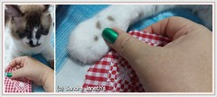 0017 - BRD - Corazones Navideños (Sandra Janeth Saa Martínez) Tags: navidad gatos mascotas bordado corazones hechoamano llaveros