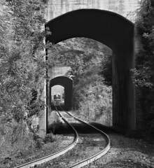 SR, Ridgecrest, North Carolina, 1974 (railphotoart) Tags: unitedstates northcarolina ridgecrest stillimage