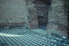 terme di caracalla, july 2014 (Tefilo de Sales) Tags: italy rome roma film museum analog 35mm 50mm ancient nikon italia pattern floor kodak mosaic di walls museo expired nikkormat terme analogic ancientrome kodak200 caracalla termedicaracalla nikkormatel