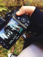 Preview of a photo I took today (Emily Wrightson) Tags: england nikon 3200 nikon3200