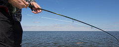 chris fighting bull red (benpaschal) Tags: temple fly fishing louisiana fork bull redfish outfitters tfo
