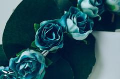 Acessório para cabelo - Fada (Frann dos Santos) Tags: flores flower fairy fantasy mermaid concha coroa cabelo headband fada accessory sereia grampo acessórios pérolas headpin