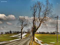 Strae des Frhlings (GerWi) Tags: street schnee trees winter sky snow streets tree clouds outdoor pflanze felder wiesen himmel wolken ground bume baum acre rasen frhling boden strommasten erde grund masten strasen strase schneeschmelze