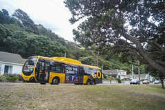 Lyall Bay - Queens Drive (andrewsurgenor) Tags: city newzealand urban bus buses yellow electric busse transport transit nz wellington publictransport streetscenes omnibus trolleybus obus trolleybuses citytransport trackless nzbus gowellington