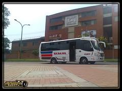 Expreso De La Sabana S,A,S, 218 (Los Buses Y Camiones De Bogota) Tags: de la colombia bogota sa autobus expreso sabana 218 busologia