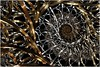 Interstellar Gateway (Ross Hilbert) Tags: sculpture art metal bronze silver spiral gold chaos julia circles steel space digitalart rings computerart fractal brass pewter mandelbrot generativeart juliaset mathart fractalart algorithmicart mandelbrotset orbittrap fractalsciencekit fractalgenerator steinerchain fractalsoftware fractalapplication