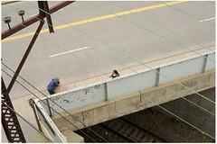 New Rochelle Peep (drombit007) Tags: bridge lines train garbage steel tracks cable el wires crisscross newrochelle overhead elevatedtrain insulators smcpentaxm11450mm