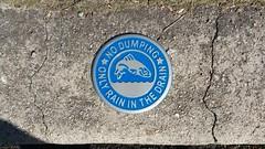 James River (Gamma Man) Tags: water river virginia richmond va sewer richmondva richmondvirginia rva jamesriver carytown carytownva carytownvirginia