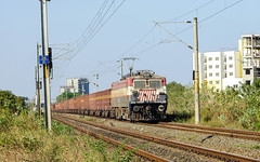 Visitor from North (Sajin Panchil) Tags: india train ir indian rail railway loco locomotive ldh freight iri bhel trainspotter railfanning indianrailway irfca paranur wag7 incrediableindia indiarailinfo