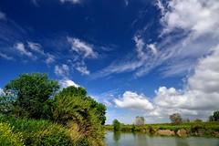 #Fiumetevere (urbanifausto) Tags: photo natura paesaggi fiumi