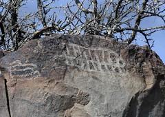 Petroglyphs / Blackrock Well Site (Ron Wolf) Tags: california archaeology grid nationalpark nativeamerican salinevalley petroglyph rectangle anthropology shoshone rockart deathvalleynationalpark numic bisectedrectangle