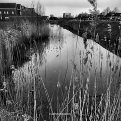 Waterdonken_Artstudio23_011 (Dutch Design Photography) Tags: new architecture fotografie natuur workshop breda blauwe miksang wijk zien huizen luchten uur hollandse fotogroep waterdonken
