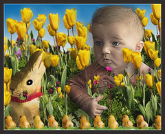 Easter Hunt (1withone) Tags: flowers rabbit kid toddler child chocolate chicks hungry dyke easterbunny