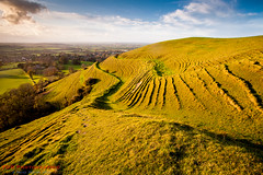 Hambledon Hill (TDR Photographic) Tags: uk autumn light sunset england heritage history canon landscape evening ancient view ramparts dorset hillfort earthworks eos5d shutterstock hambledonhill